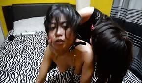 Lesba hat einen würzigen Asiaten an der Leine